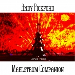 Andy Pickford - Maelstrom Companion
