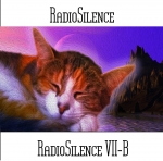 Andy Pickford - RadioSilence VII-B