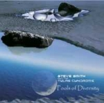 Steve Smith + The Tylas Cyndrome - Pools of Diversity